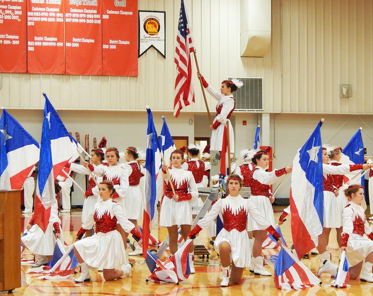 flag girls vets